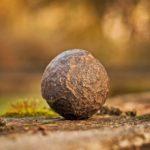 leasing maszyn do kamienia
